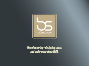 bs collection logo RayConvertous